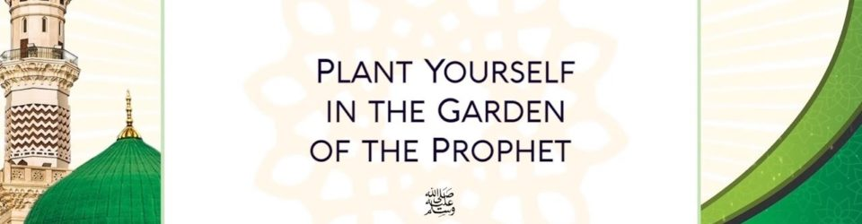 plant yourself in the garden of the prophet